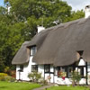 Thatched Holiday Cottages